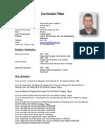 Curriculum Vitae Daniel Guerra Calderon Nuevo