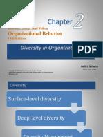 2. Diversity in Organizations