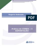 Apostila de Prática de Comex  I - Exportação.pdf