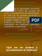 Aplicación de Pruebas de la Auditoría de Gestión.ppt