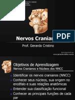T2 Nervos Cranianos e Nucleos