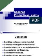 Presentacion 2 Cadenas Productivas Exitos