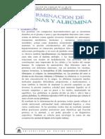 determinacion de proteinas y albumina.docx