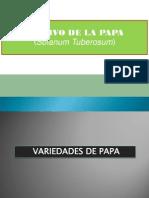 5 Variedades de la papa