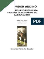 El Condor Andino