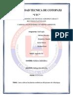 informe plantas endemicas.docx