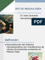 Trasplante de Medula Osea Mayo 2007 19536