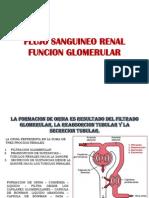 FLUJO SANGUINEO RENAL FUNCION GLOMERULAR.pptx