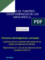 Tumores Odontologicos