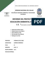 QUIMICA ORGANICA PROYECTO DE COLEGIOS.docx