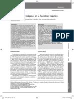 Diagnóstico por imágenes en la fasciolosis hepática