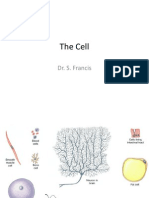 Unit_1_Cell