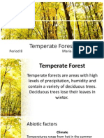 Temperate Forest.pptx