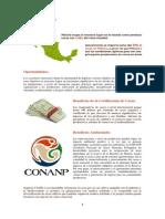 19 Porque Invertir en Cacao y Beneficios Ecologicos