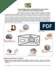 Innovación Tecnologica Bio Climatica para Sud America_NOV 09
