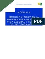 Mód 6 - Medidad viables en la empresa para mejorar la vida laboral y personal de los trabajadores.pdf