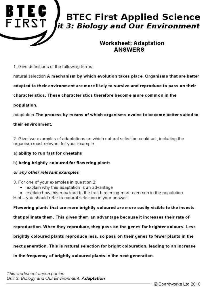 worksheet Adaptations Worksheet adaptation answers natural selection