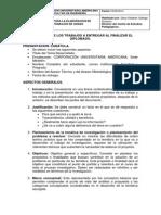 Guía elaboración de Trabajos de Grado..pdf