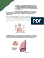2 Terminologia de Enf Infecciosas