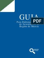 Guia Plan Ayuntamientos Observatorio