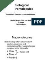 IBT01 L2 Macromolecules 2011 12