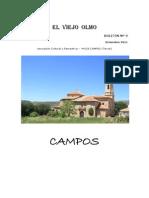 Asociación El Viejo Olmo. Revista 2011
