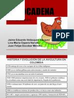 Alimentación-vacunas.pdf