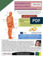 Curso de Neurodinamia en la práctica clínica