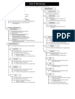 Microbiology Chart