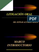 Litigacion Oral Edwar 2