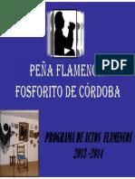 Programa Temporada 2013 2014