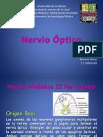 nervio optico eliany