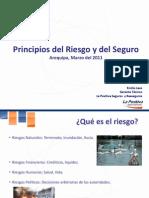 Principios Del Riesgo y Del Seguro