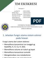 Sistem Ekskresi Kelompom 5