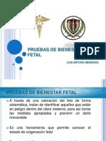 pruebasdebienestarfetal-130825193002-phpapp01