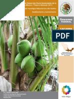 Paquete tecnologico de la Palma Coco