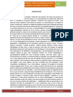 Informe  final Proy  Inv  OUI 2013.docx