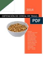 Obtencion de Un Cereal de Desayuno de Trigo