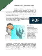 El Alcohol y El Sistema Nervioso Central.