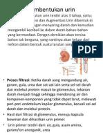 Pembentukan urin