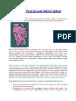Manfaat Dan Penggunaan Bakteri Dalam Industri