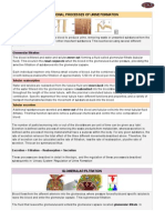 04 Functional Processes of Urine Formation