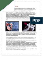 El VIH (1).docx
