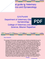 Pict guide to Vet Obs and Gynaec Two 1.10.ppt
