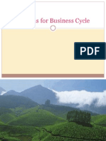 Reasons for Business Cycle