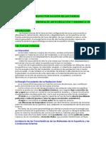 Tema 10 Modelado Del Relieve Por Accion de Las Fuerzas Externas I. - Copia