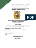Informe N_1 Quimica Organica