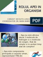 Rolul Apei in Organism