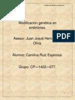 Modificación genética en embriones.