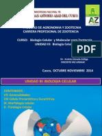 Unidad III Biología Celular 281014.pptx